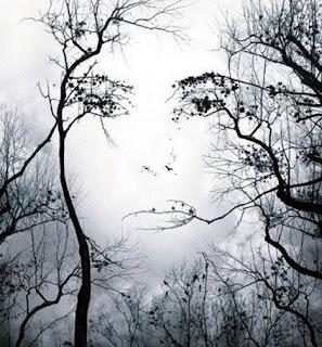 http://3.bp.blogspot.com/_tQf3Civ3lMg/TBMKxNIFaGI/AAAAAAAABvY/l4mzB1hfId0/s1600/face-in-trees-illusion.jpg