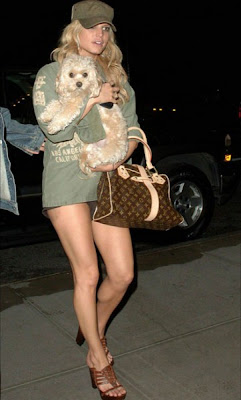 Jessica Simpson Dog Missing pictures