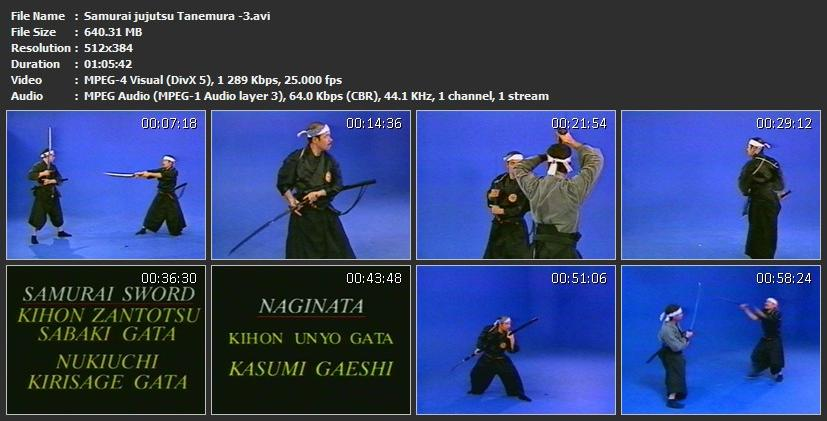 Martial Arts & Sports Video: SAMURAI JUJUTSU TANEMURA (SWORD)