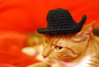 Spindles And Spices Giddyup Kitty