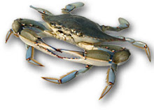 MARYLAND'S BLUE CRAB  EMAIL GINN@GOEASTON.NET  MOBILE +1 410 310 4966