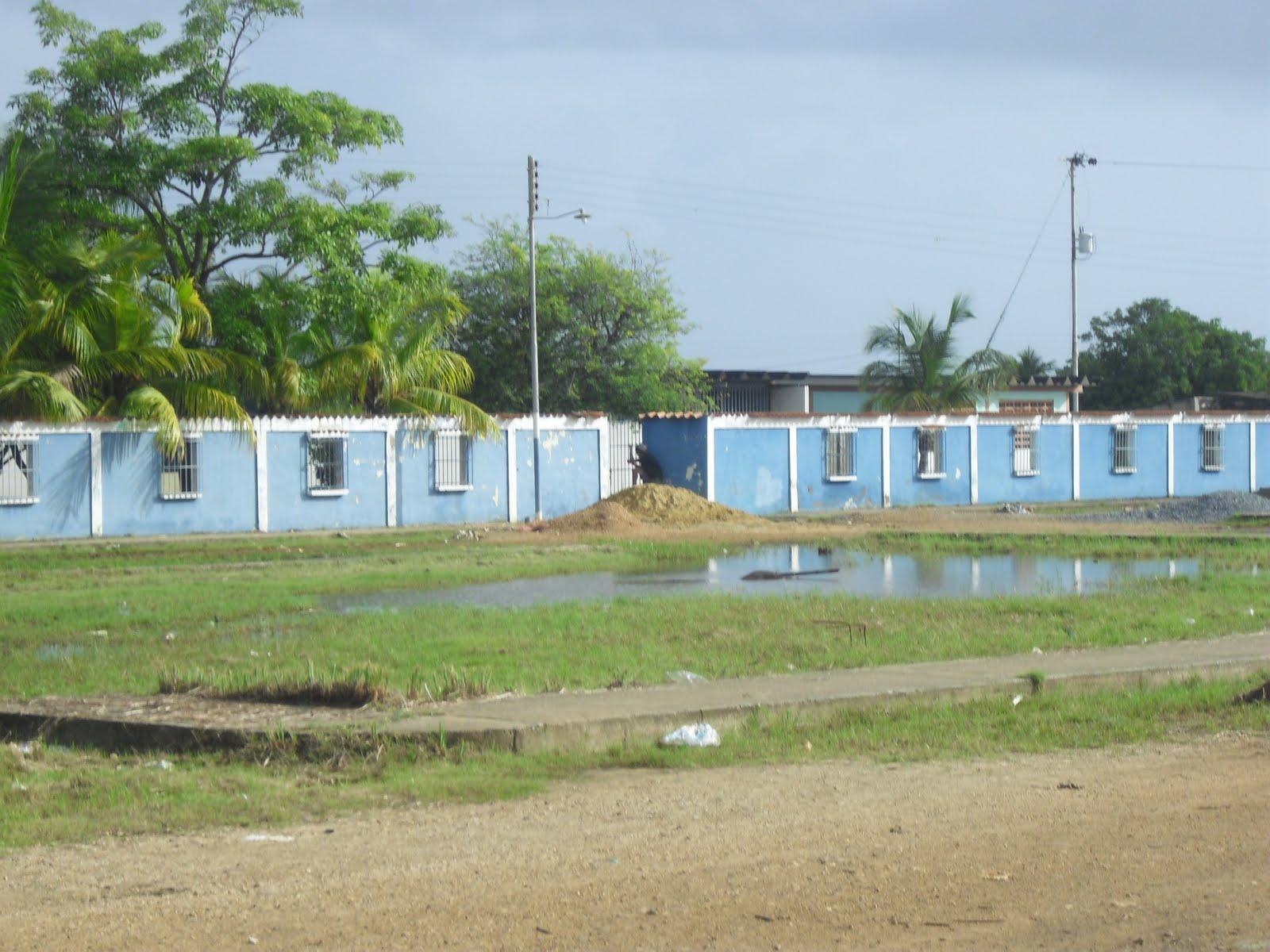 Image result for liceo jacinto regino pachano tocuyo costa