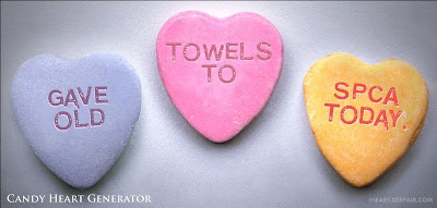 candy hearts: Gave old towels to SPCA today.