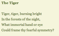 Tiger, by William Blake - first stanza