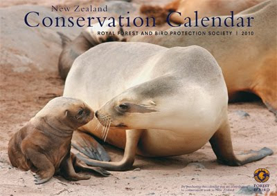 New Zealand wildlife 2010 calendar