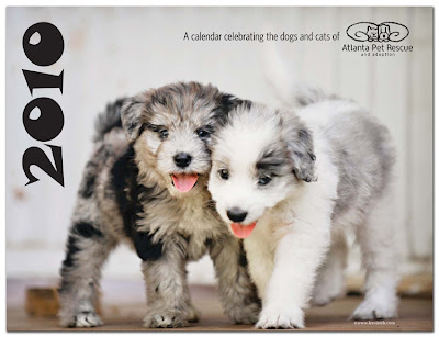 Atlanta pet rescue calendar