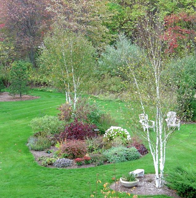 Plant Inventory At 20 Timothy Birch Garden