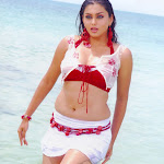 Namitha Hot Pictures Collection