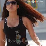 Tamil Actress   Hot & Sexy Nayanthara