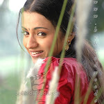 Cute & Lovely Trisha
