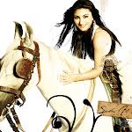 Cute Bollywood Babe Soha Ali Khan