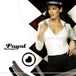 Sexy Bollywood Actress Payal Rohatgi