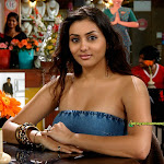 Sexy Namitha Collections