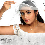Namitha New Pictures Collection
