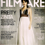 Preity Zinta   $exy Bollywood Babe Hot In Magazine Covers