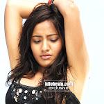 Tamil Hot Actress Neha Sharma Hot & Sexy Photoshoot