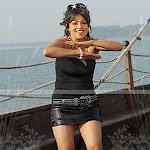 South Indian Spiccy Actress Asha Saini Wallpapers