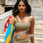 Telegu Actress Anushka  Hot Sexy Wet Pictures Gallery