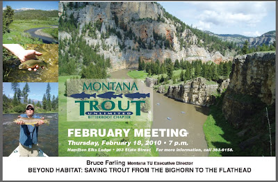 BEYOND HABITAT: Saving trout from the Bighorn to the Flathead in Montana