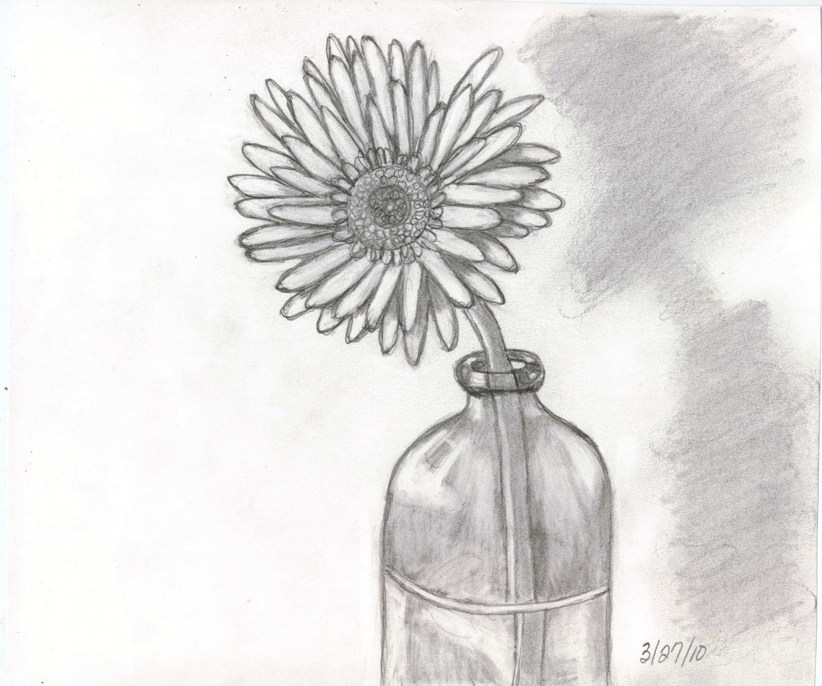 Sketches And Things: Flower In A Glass Bottle -- Pencil