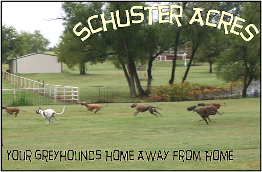 Schuster Acres, Your Greyhounds Home Away from Home