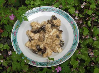 Geschmorter Tofu mit Shiitake-Pilzen