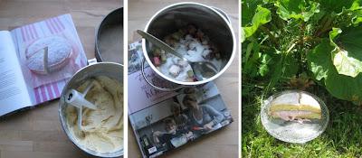 Zubereitung Rhabarbercremetorte (Victoria Sponge Cake mit Rhabarber)