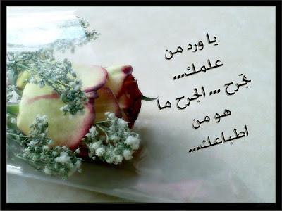 يمر في حياتنا اناس ك الورود... 1.jpg