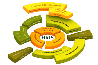 Information Systems And Hris In Action Hris Model