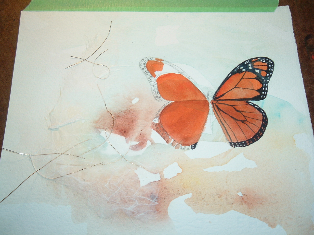 Diana M Davis Watercolor Monarch Butterfly