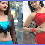 Poonam Bajwa Successful In Tamil Movies