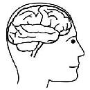 Calmar los Nervios de Forma Natural