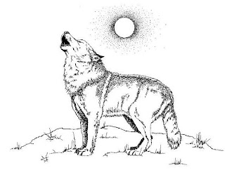 wildlife coloring pages # 7