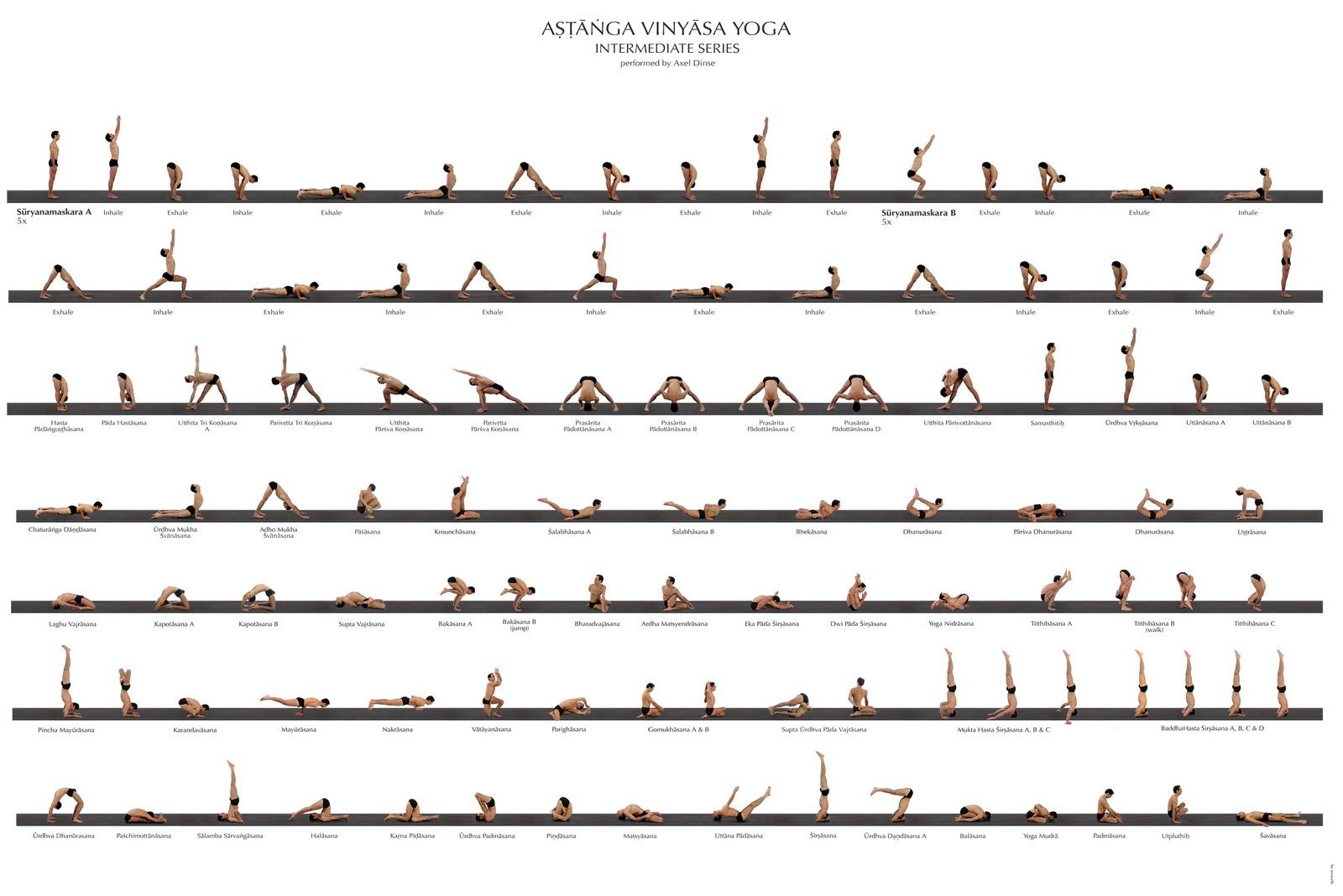 Portal del Sol: Ashtanga Vinyasa