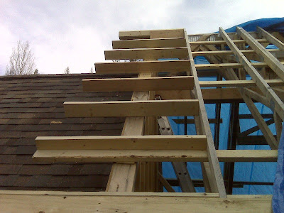 Building A House A Simple Plan More Lookout Rafters