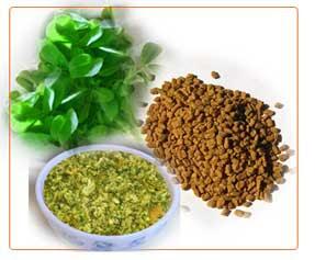 والألتهابات الجلدية، والرضاعة fenugreek-leaves.jpg