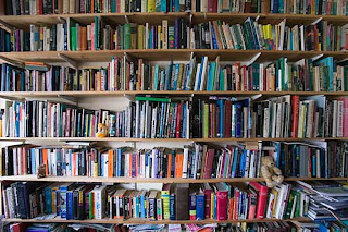 National Book Critics Circle: Guest Post: Too Many Books