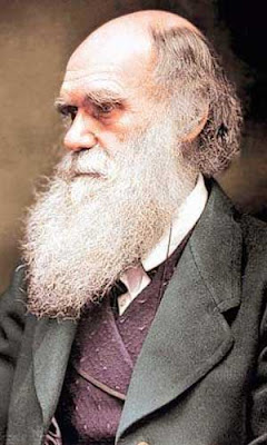 ciência, religião, darwin, estudo bíblico
