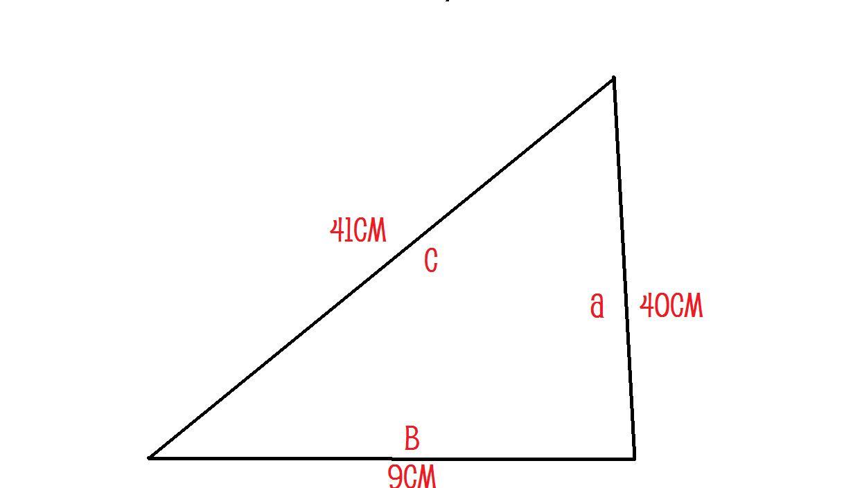 Pythagoras Homework Help Math Using The Pythagorean Relationship Homework  Book Math Using The Pythagorean Relationship Homework