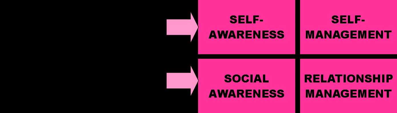 self awareness relationship management