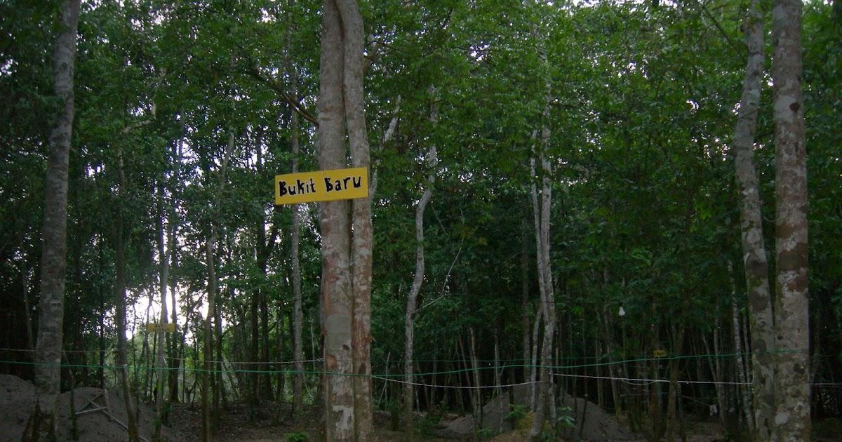 DARI HUTAN INI Tapak Khemah dan Musim Durian di KLD