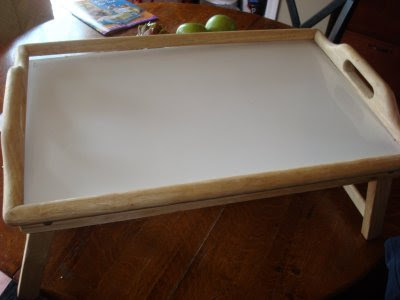 Goodwill tray for pet food