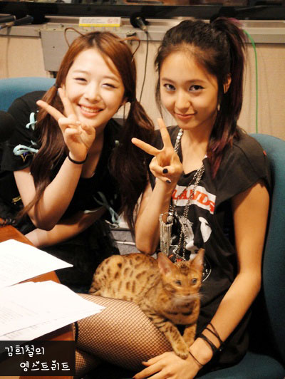 Shinee taemin társkereső sulli