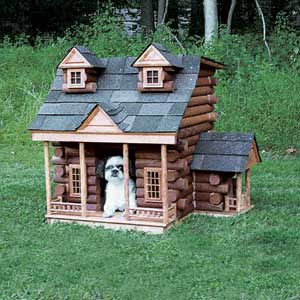Mighty Lists: 12 luxury doghouses  Mighty Lists: 1...