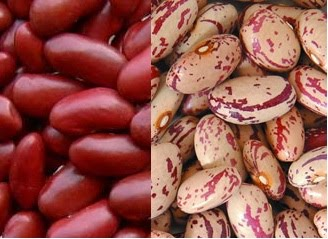 Treat Your Tongue Rajma Kidney Beans Curry And The First Award