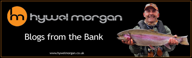 Hywel Morgan's Blog from the Banks