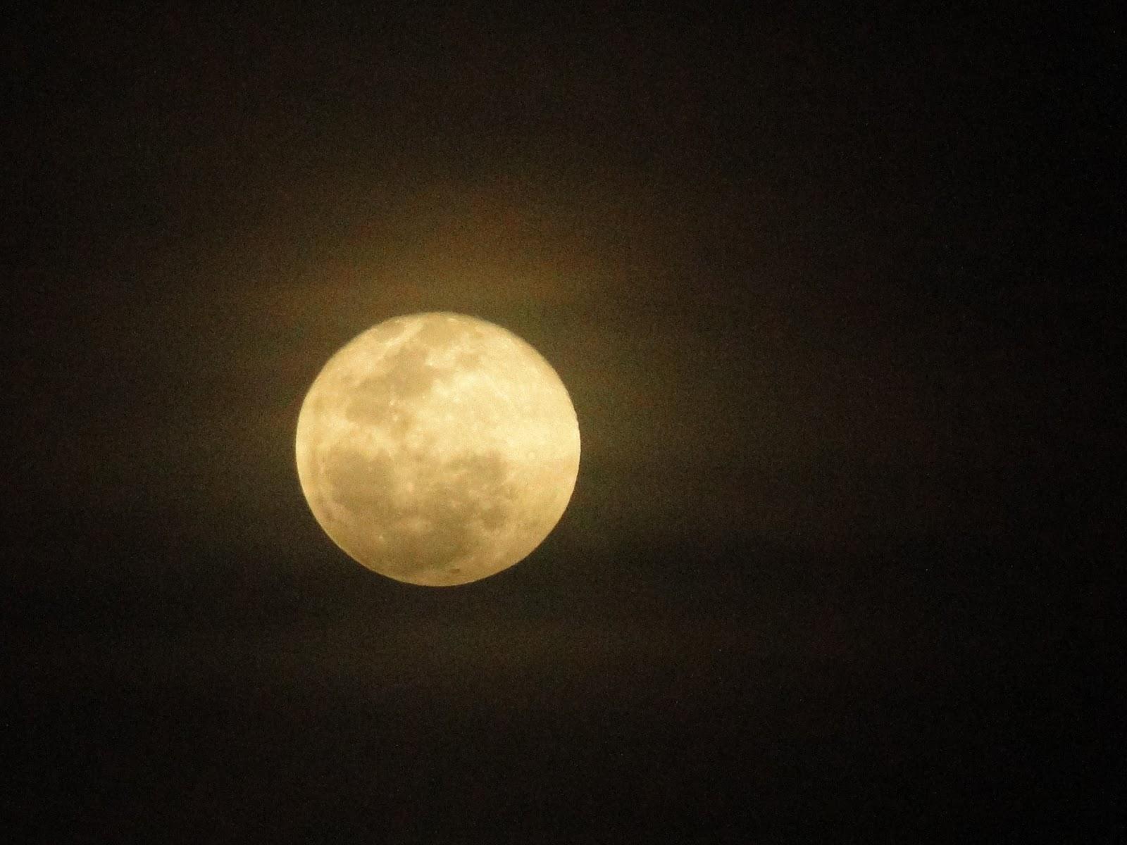 Lua Eu Descobri Que A Solidão é O Grande Amo: Vida Louca, Vida