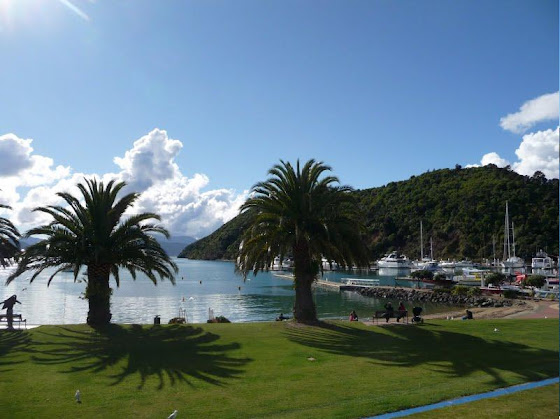 Picton en la Isla Sur Nueva Zelanda