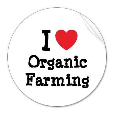 ORGANIC FARMING PART 1 ~ HUMAIRA FARM