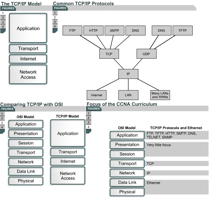CCNA ) Be a Good Network Administrator OSI layers / Peer-to-peer